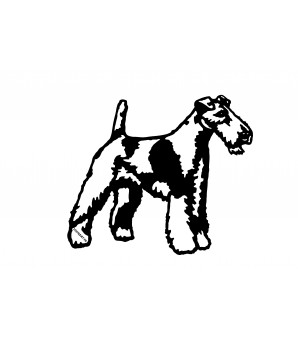 Fox terrier poil dur