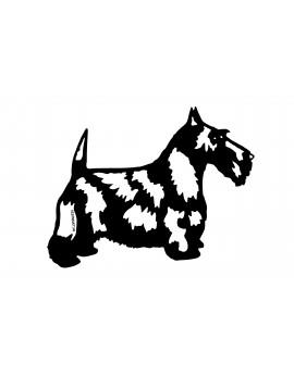 Scottich terrier